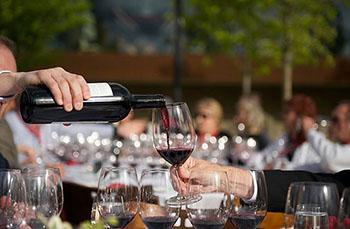 Wine Tasting in Bulgaria
