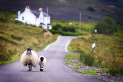 Scottish country scene: A pair of dancers on the road