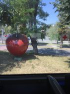 Red apple in Bistritsa